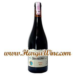 Casa Marin Cartagena Pinot Noir 2018